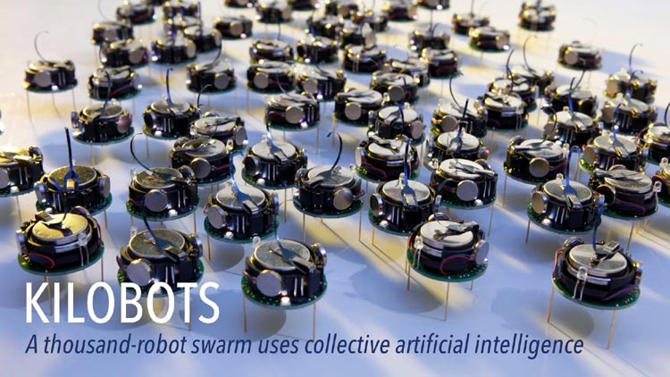 Introduction to Swarm Robotics