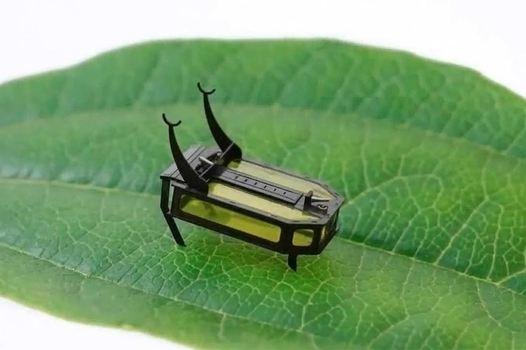 Micro-Robots that could potentially alter the Future of Robotics