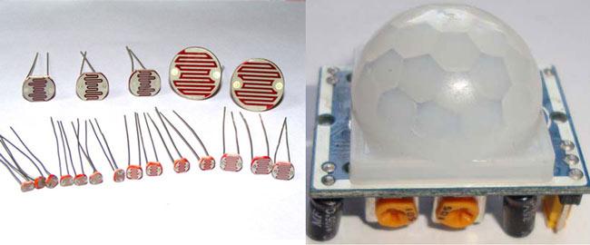 LDR and PIR Sensor