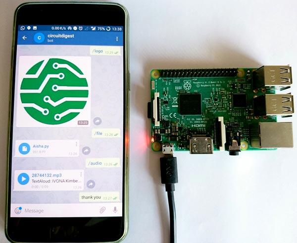 setup telegram app on raspberry pi