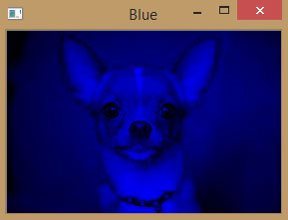 Blue Converted Image using OpenCV