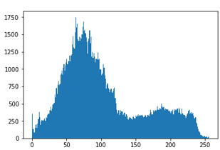 Histogram of Image with all the Merged Channel using OpenCV