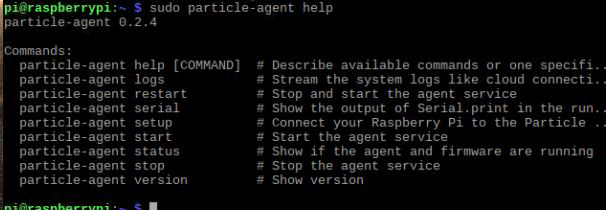 Installed the Particle Agent in Pi