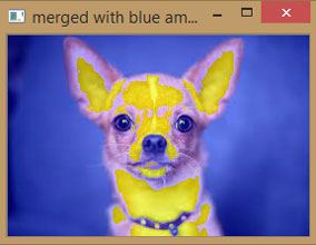 Merged Image with Amplified Blue Color using OpenCV