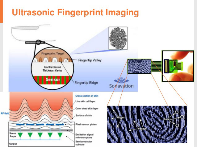 In-display Fingerprint Sensors: Types and Working