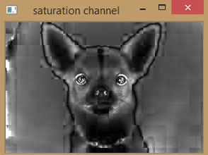 Saturation Channel of Image using OpenCV