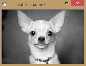 Value Channel of Image using OpenCV