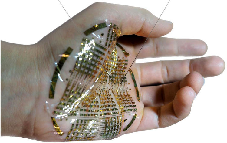Bioelectronics Device