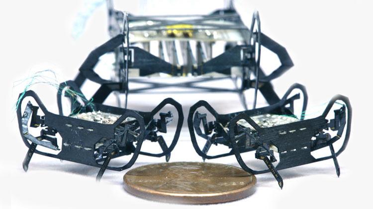 Harvard Ambulatory Microbot