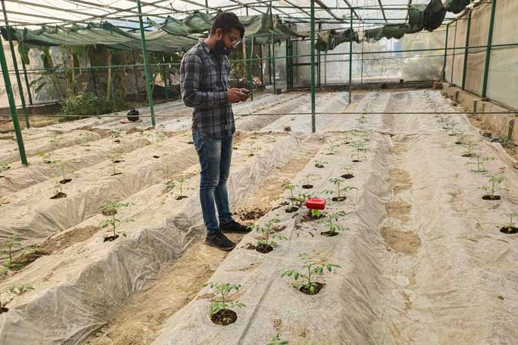 IoT based Smart Irrigation Controller