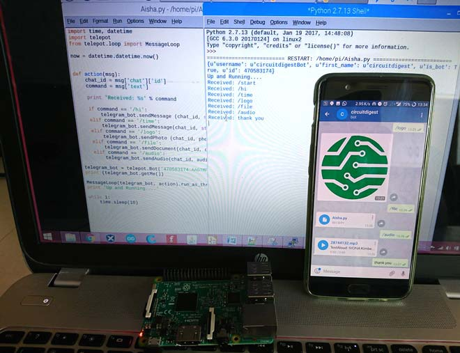 Making a Raspberry Pi Telegram Bot to Share Text and Files