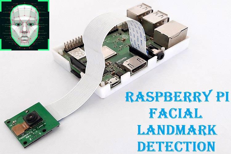 Raspberry Pi Facial Landmark Detection