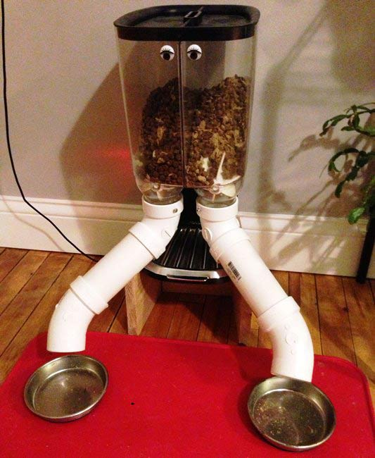 Raspberry Pi Powered Cat Feeder