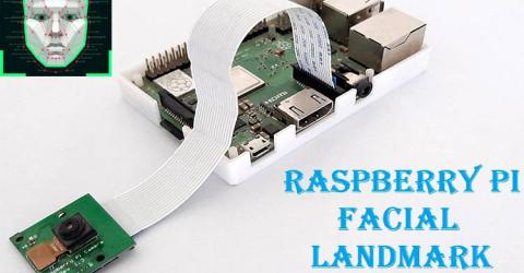 Raspberry Pi Facial Landmark Detection