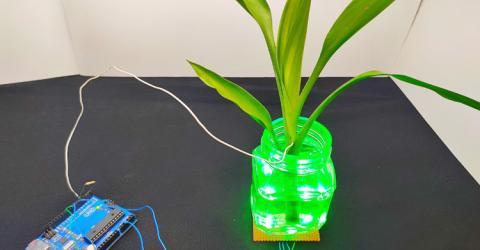 Touch Sensitive Color Changing Plants using Arduino and RGB LEDs