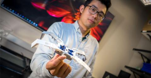 Insect-Inspired Flexoskeleton Robots