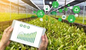 How Internet of Things (IoT) is Transforming Food Industry and Improving Food Safety