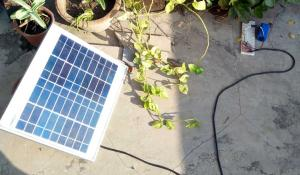 Solar Powered Automatic Garden Light