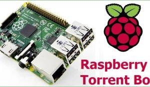 DIY Raspberry Pi Torrentbox