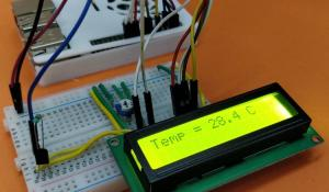 Interfacing DS18B20 Temperature Sensor with Raspberry Pi