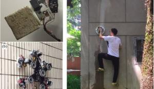 ZPD Based Climbing Robots and Robotic Arms Operating on Rough Surfaces