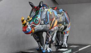 Raspberry Pi Powered Rhino - 'Erica'